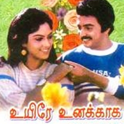 Panneeril Nanaintha Pookal Song Lyrics