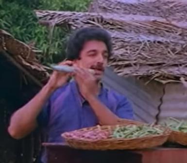 Nama Singaari Saraku Song Lyrics
