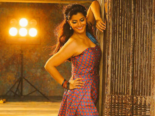 Chinnanchiru Kiliye Song Lyrics