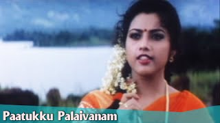 Paatukku Paalaivanam Song Lyrics