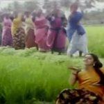 Singarama Nalla
