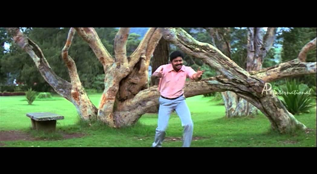 Pinju Mazhai Charal Song Lyrics