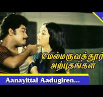 Aanaiyittal Aadukkiren Song Lyrics