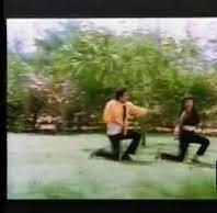 Pon Maane Niladi Song Lyrics