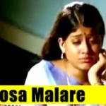 Rosa Malare