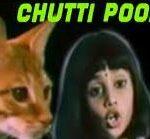 Chutti Poonai