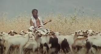 Kalaiyile Kadhir Arukka Song Lyrics